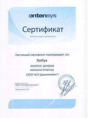 Softys_Entensys_diler_for_31.12.2014_small